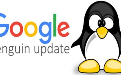 Google Penguin Update – Cosa cambia nei testi web?